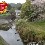 日本一短い川って和歌山にあるの?塩川なの?ランキング発表!
